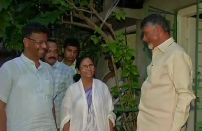 Chandrababu Naidu, Mamata Banerjee meet in Kolkata, decide to hold talks after May 23
