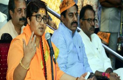 MP Lok Sabha Election Results: Trends show BJP leading on 28 seats; Sadhvi Pragya leads, Scindia trails