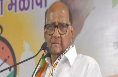 Lok Sabha Elections 2019: NCP chief Sharad Pawar accepts defeat