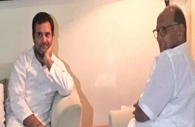 Is NCP merging with Congress? Meeting between Rahul Gandhi and Sharad Pawar sparks speculation