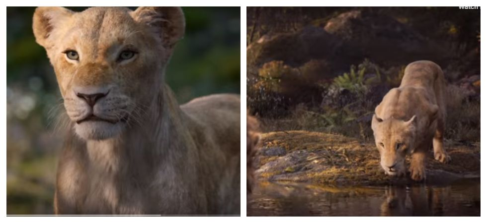 New 'The Lion King' clip featuring Beyoncé as Nala is out (Photo: YouTube)