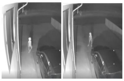 Dobby is that you? Security camera captures elf-like creature from Harry Potter, WATCH