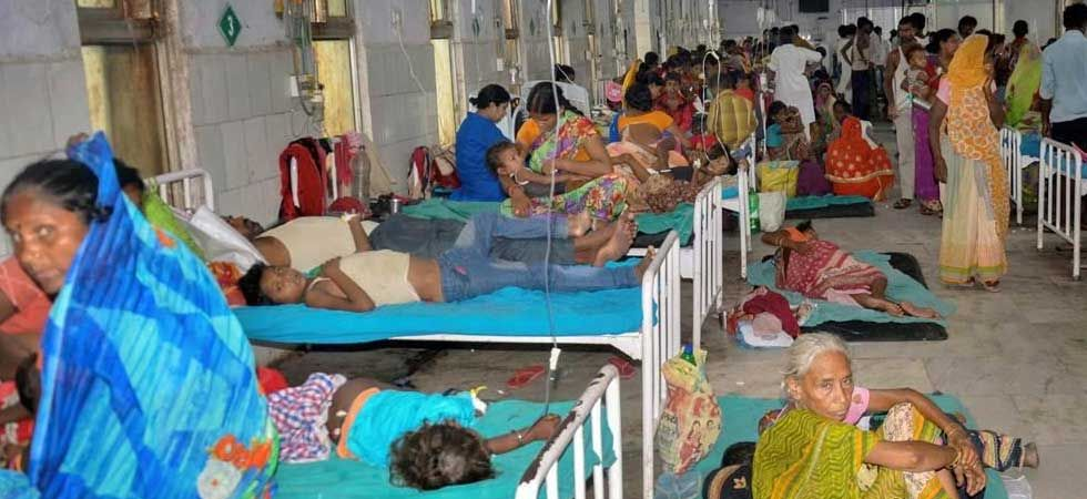 Muzaffarpur district has bore the maximum brunt, accounting for 117 deaths so far. (PTI Photo)
