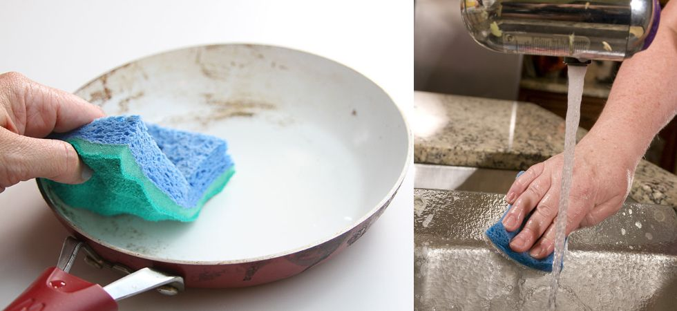 The researchers isolated bacteria from their own used kitchen sponges and then used the bacteria as bait to find the phages that could attack it. (Photos: Creative Commons)