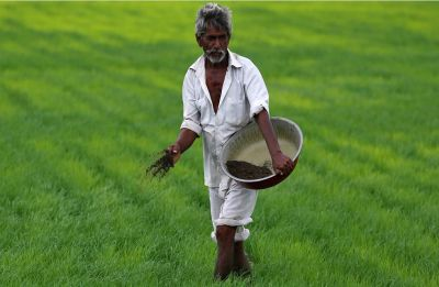 PM-Kisan Scheme: Govt plans more benefits for farmers, yearly aid may grow to Rs 8,000