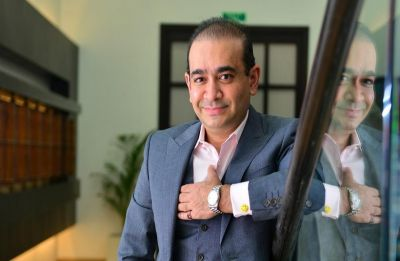 DRT directs Nirav Modi, aides to pay over Rs 7,200 crore to PNB and others