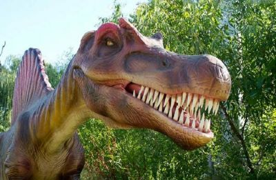 Duck-billed dinosaurs that roamed Earth around 80 million years ago identified