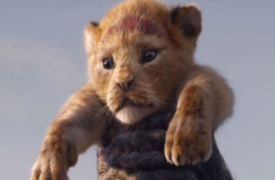 The Lion King (Hindi) Review: Visually endearing masterpiece sans a soul