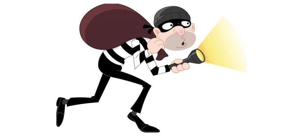 Thief (Representational Image)