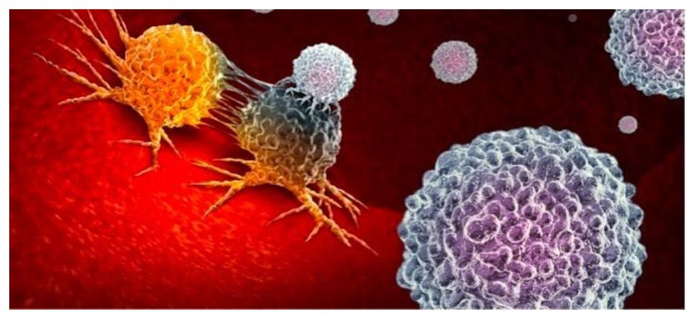 Scientists develop new drug that tricks and kill cancer cells (Photo: Twitter)