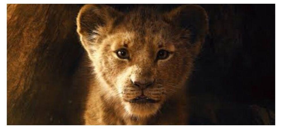 Original 'Lion King' animator criticises remake (Photo: Twitter)