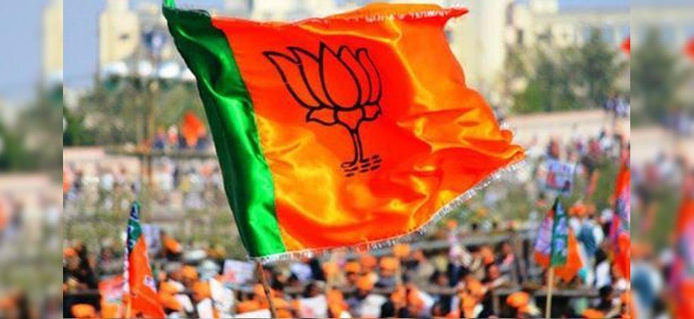 BJP Flag (File Image)