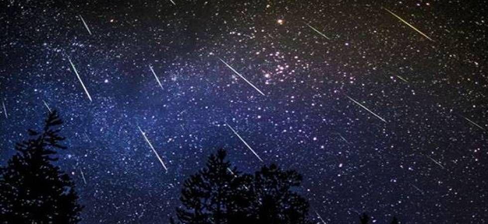 Perseid meteor shower (File Photo)
