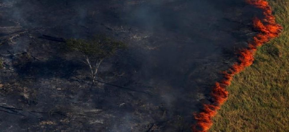 The country's National Space Research Institute, which monitors deforestation, has recorded more than 77,000 wildfires in Brazil this year. (File Photo)