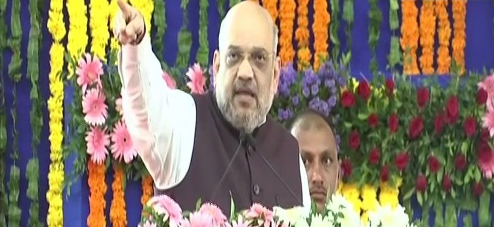 Amit Shah emphasised that people have supported the Modi government's move to abrogate Article 370. (Image Credit: ANI)