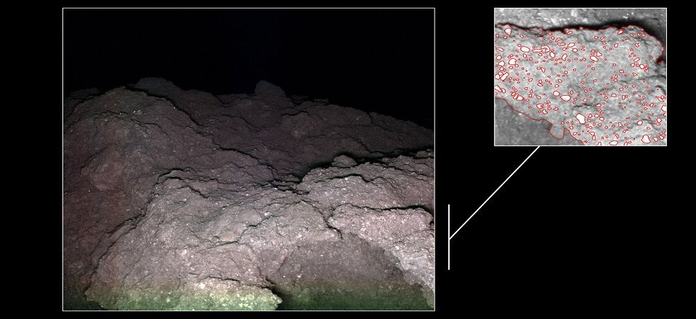 Some of the rocks on Ryugu are made up of carbonaceous chondrite (Image: MASCOT • JAXA • DLR)
