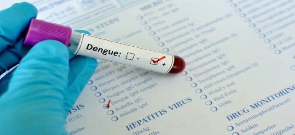 Dengue Vaccination In India From Next Year: ICMR (file photo)