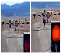 60-Year-Old Woman Was The Only One To Actually Storm Area 51 Gate, WATCH