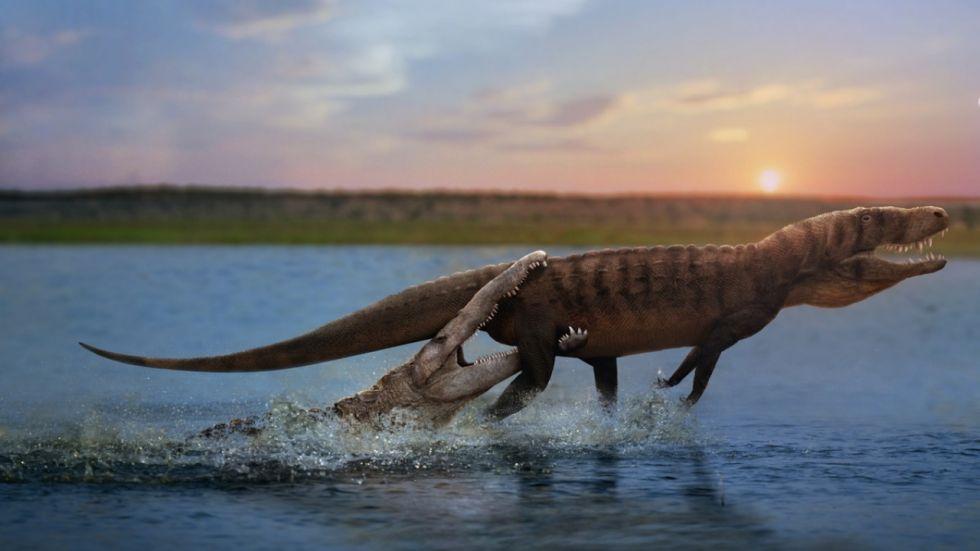 Croc-Like Predators Preyed On Dinosaurs (Photo Credit: eartharchives.org)