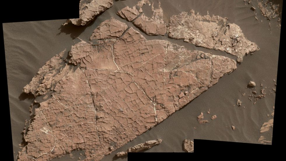 NASA's Curiosity Rover Discovers An Ancient Oasis On Mars