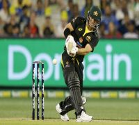 David Warner's Magnificent Twenty20s Form Is A Statistician's Delight