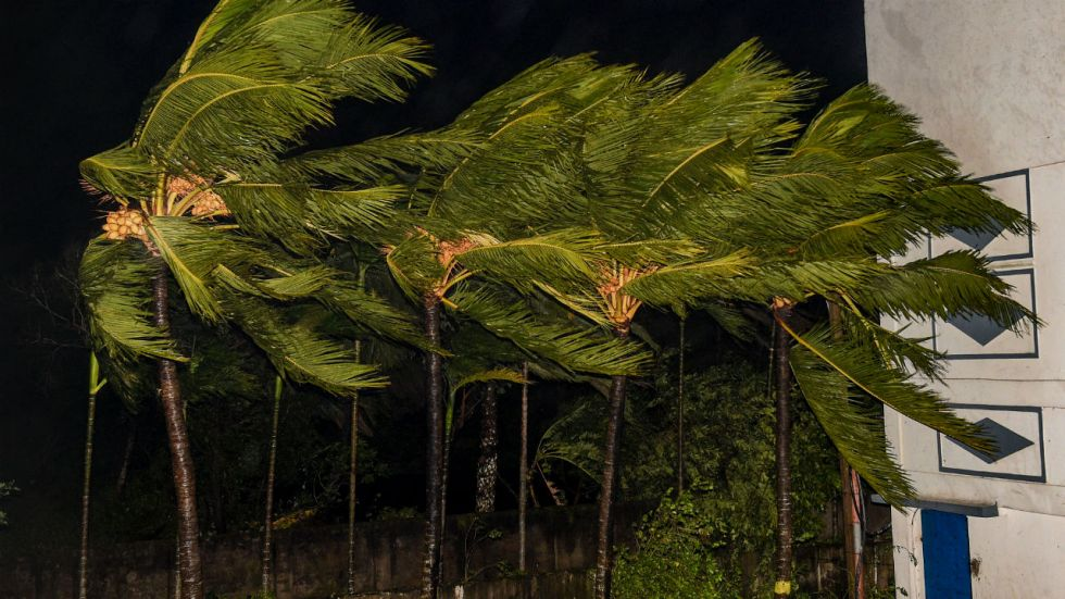 South 24 Parganas: Trees sway as heavy wind induced by Cyclone Bulbul hits Bakkhali