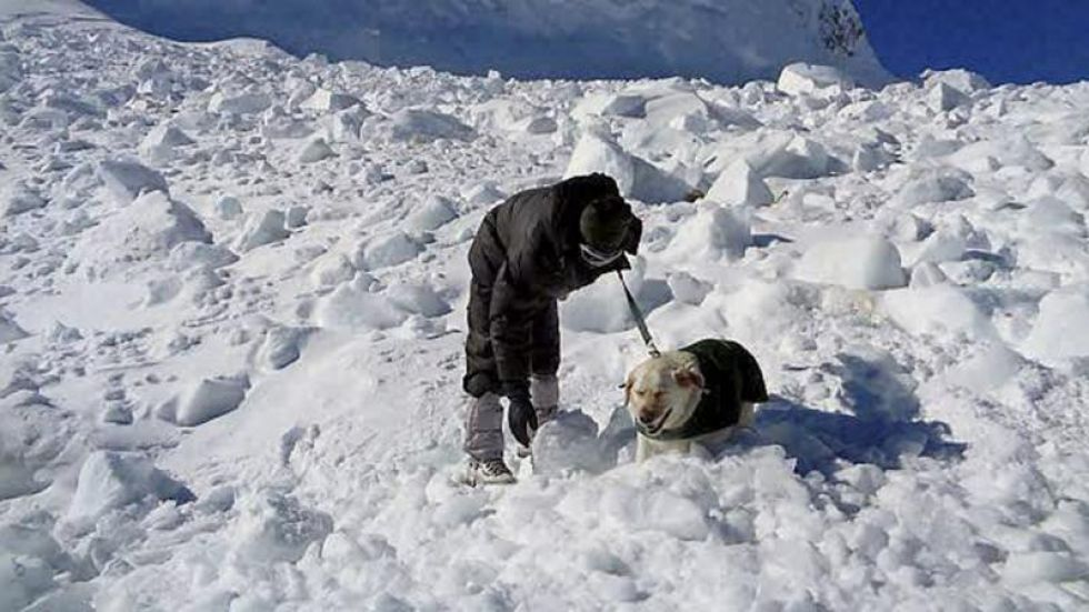 Four Indian Army soldiers among six people killed in avalanche in Siachen Glacier