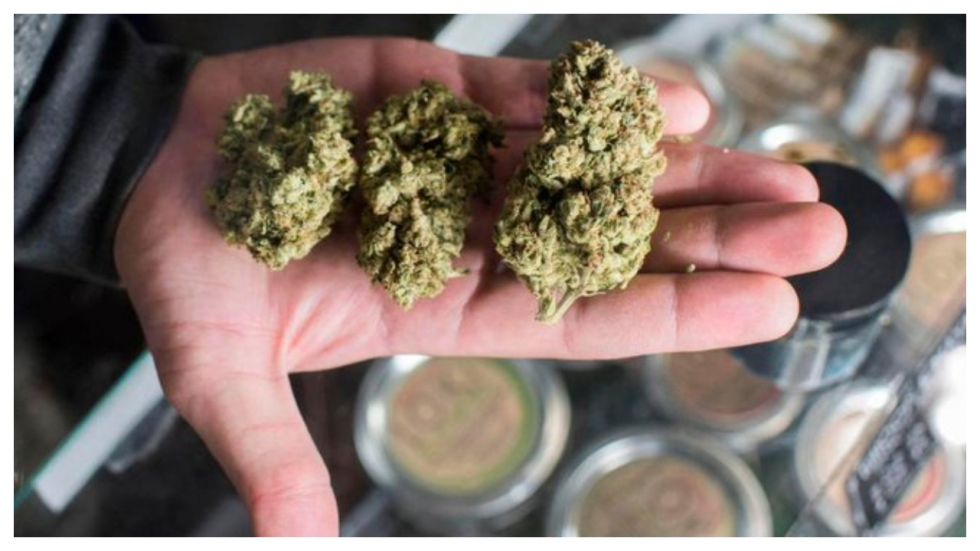 US Company Will Pay You Rs 2 Lakh A Month to Smoke Weed