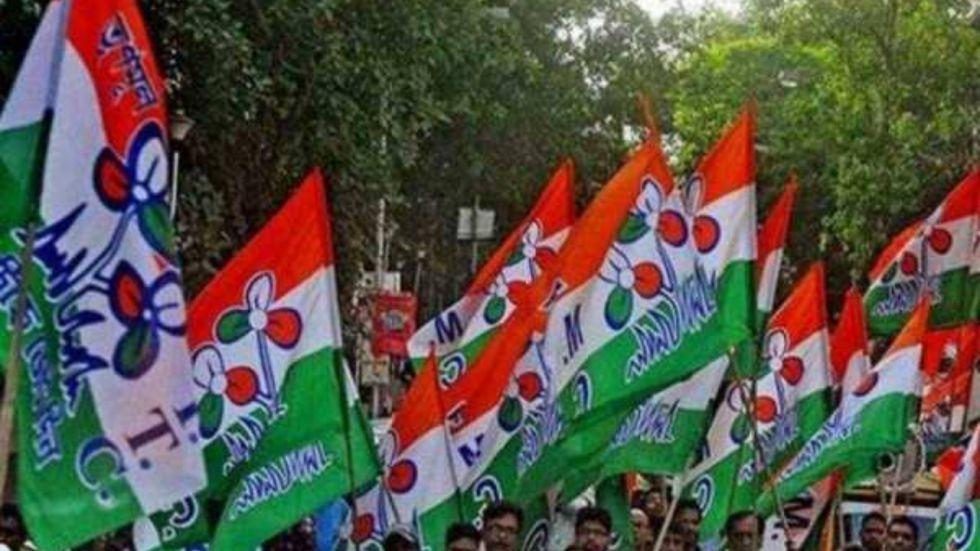 West Bengal Bypolls: Trinamool's Tapan Deb Sinha Wins Kaliaganj Assembly Seat (Image: Trinamool Flags)