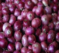Maharashtra Cloth Shop Offers Free 1 Kg Onions On Rs 1,000 Purchase