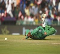Our Tea Is Fantastic - Pakistan Cricketer Ahmed Shehzad Trolls Wing Commander Abhinandan Varthaman