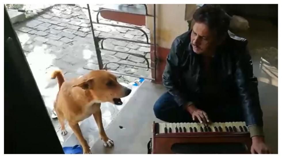Dog Goes Joins Man In Signing Ranu Mondal's'Teri Meri Kahaani