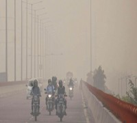 Air Pollution Linked To Poor Brain Development In Kids: Study