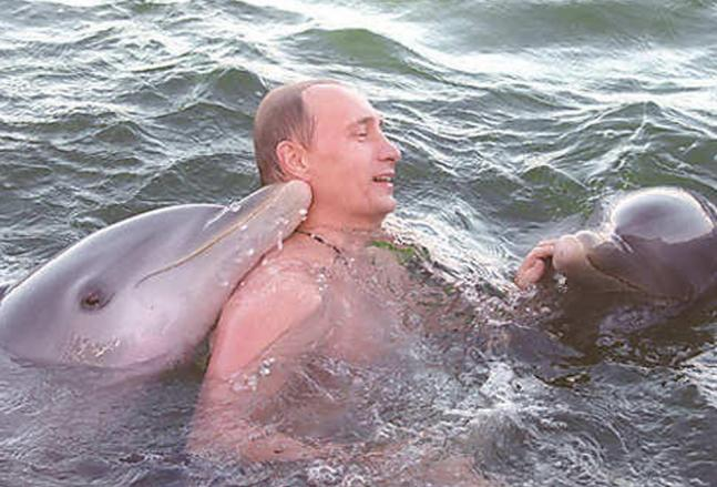 The many adventures of Vladimir Putin!