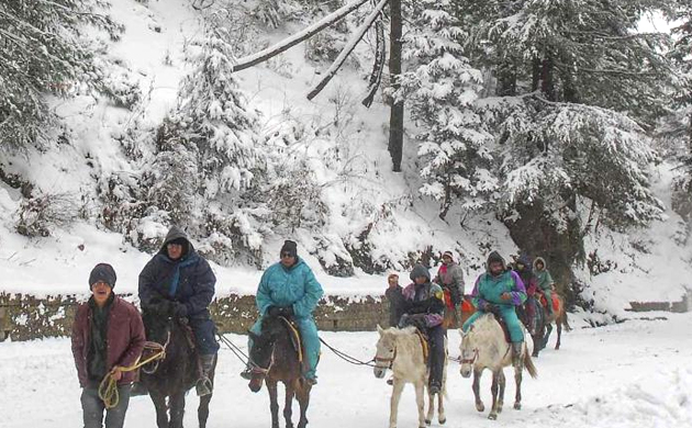 Himachal Pradesh: A Christmas harbinger, heavy snowfall in these cities transforms into Wonderlands