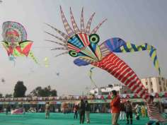 Colorful kites in the Gujarat kite festival