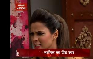 Serial Or Cinema: Shesha loses cool on Yamini in Naagin serial