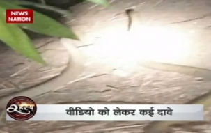 Watch video to know the mysterious truth behind 'Nagmani'