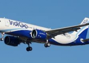 IndiGo offloads Bengaluru doctor after he complains of mosquito menace