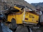 Eight students dead in school bus mishap