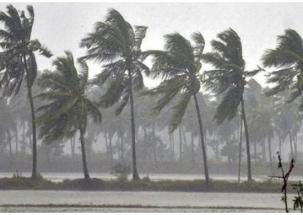 Cyclone Fani hits Odisha, a million people evacuated