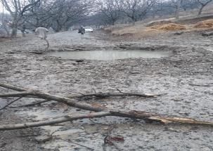 Jammu and Kashmir: IED blast in Pulwama's Tral, civilian injured