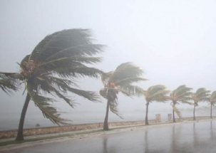 Gaja: Thousands evacuated as cyclone hits Tamil Nadu
