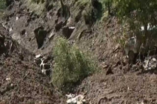 Cut2Cut: Cloudburst wreaks havoc in Uttarakhand's Chamoli