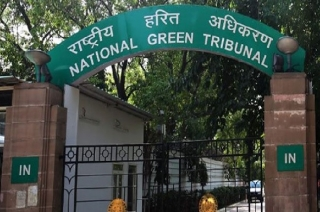 NGT slaps Rs 50 crore fine on Delhi government